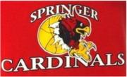 Springer Public Schools