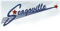 City of Seagoville (TX)